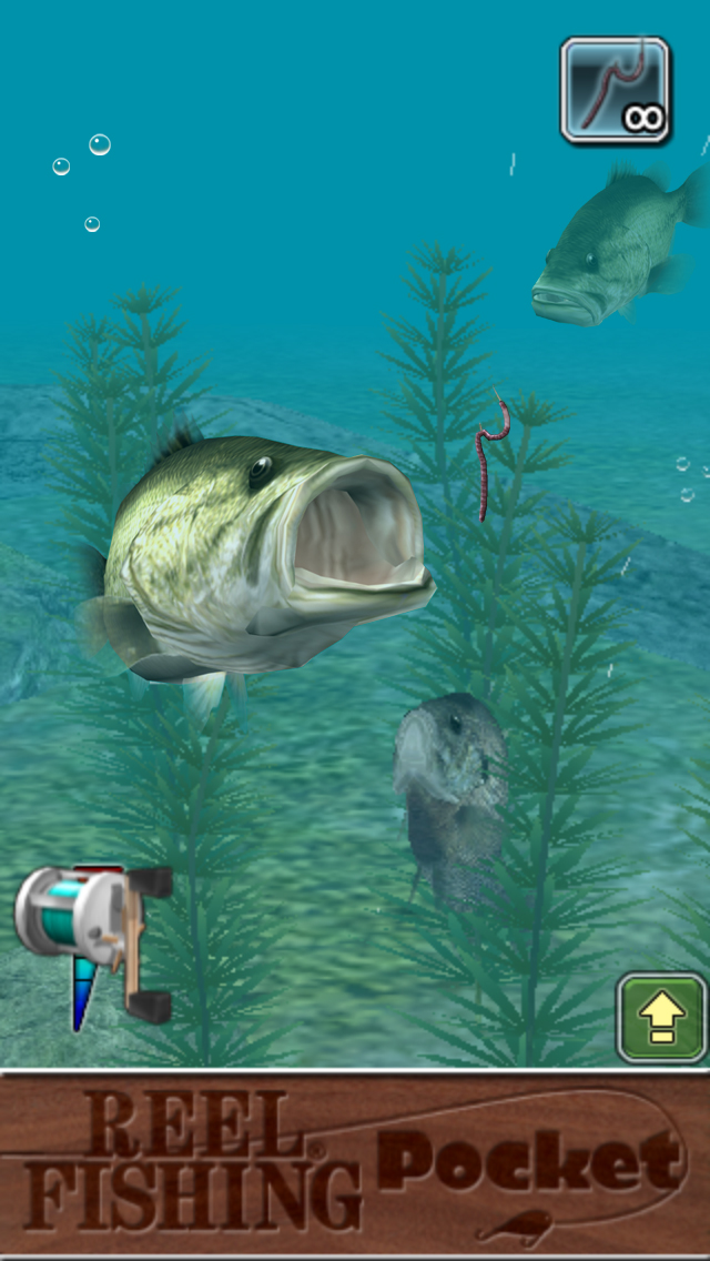 Reel fishing pocket game app now available on itunes for Best fishing game app